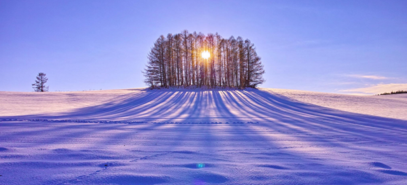 "Living In The Light: A Winter ""Soul-stice"" Healing Celebration"